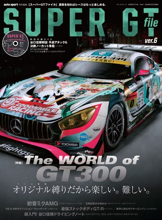 SUPER GT FILE Ver.6
